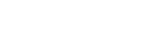 Araneco Logo